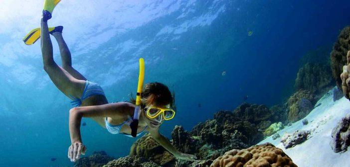 Zengi su altı yaşamıyla Maldivler'de dalış imkanı