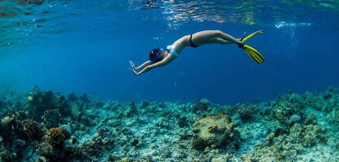 Maldivler Meeru Adası Şnorkelle Yüzme